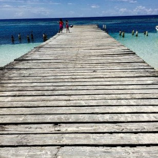 El paraíso en Isla Saona, en República Dominicana