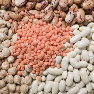 Las legumbres, fuente de proteína vegetal