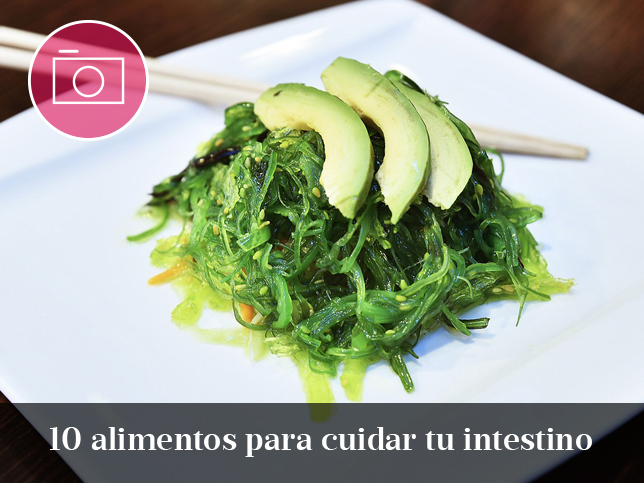 algas-probiotico