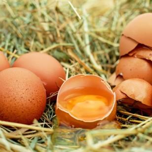 Huevos con colina