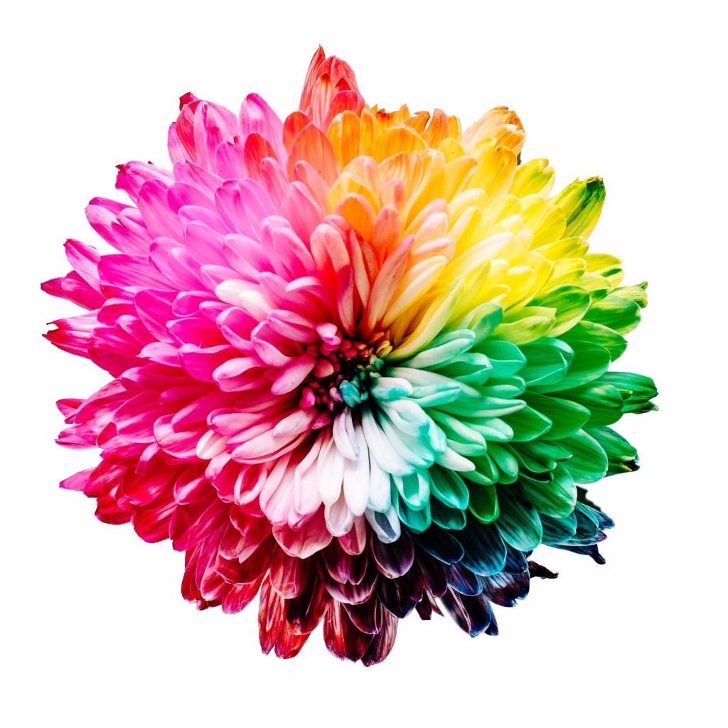 colores-estado-animo7