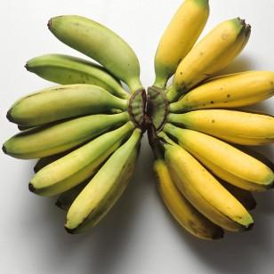 Plátano, uno de los alimento que no se deben meter en el frigorífico